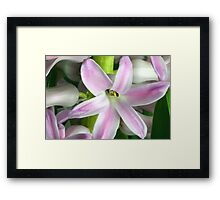 Springtime's Beautiful Reopening Framed Print