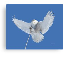 Precision is one of my many attributes Canvas Print