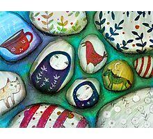 painted stones  Photographic Print