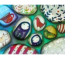 painted stones  Photographic Print