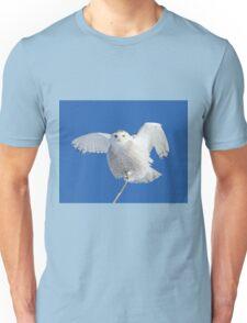 All hail to the goddess Unisex T-Shirt