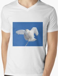 All hail to the goddess Mens V-Neck T-Shirt
