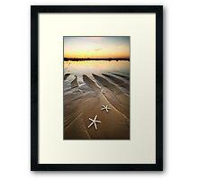 Two Little Starfish Framed Print