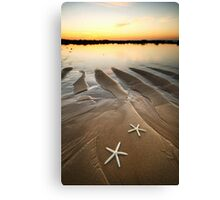 Two Little Starfish Canvas Print