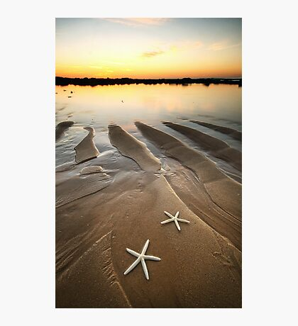 Two Little Starfish Photographic Print