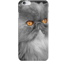 Persian orange eyes iPhone Case/Skin