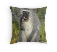 Vervet Monkey, South Africa Throw Pillow