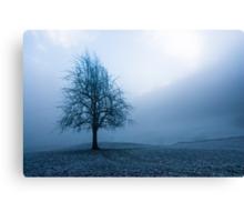 moody winter tree Canvas Print