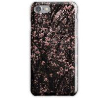 Spring Portrait MMXV Part III iPhone Case/Skin