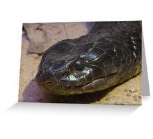 Snake II Greeting Card