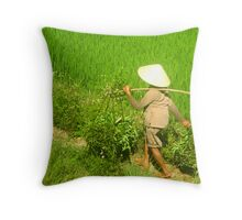 Morning in the Rice Fields Throw Pillow