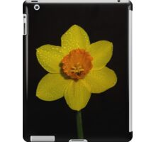 Signs of Spring iPad Case/Skin