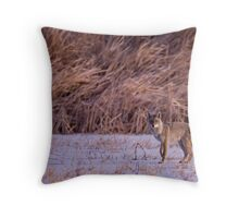 The Coyote Project, Act III, Scene i Throw Pillow