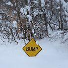 Bump...What The! by Bellavista2