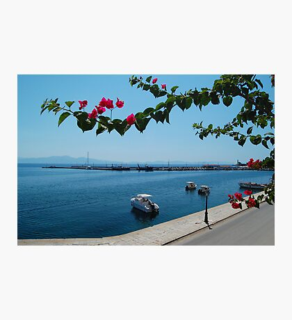 Greek Harbour Photographic Print