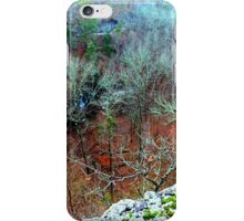 POINT OF VIEW iPhone Case/Skin