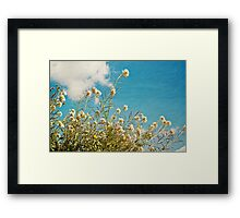 Spring time Framed Print