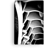 fractal ford Canvas Print