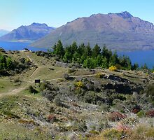 Queenstown panorama by PhotosByG
