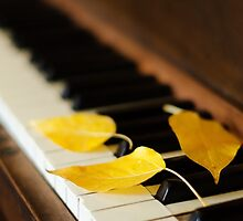 Autumn Piano by Melinda Anderson