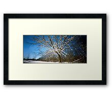 The Morning After, No. 3 Framed Print