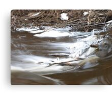 Oh, my winter 2 Canvas Print