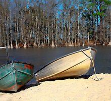 Lake Marion SC by Leta Davenport