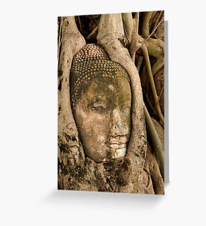 Budda Head in Roots Greeting Card