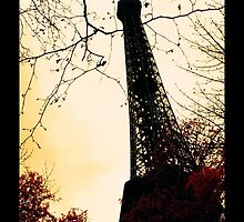 Chemical infrared photography Eiffel Tower by jordimonfort