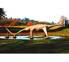 There is a Dinosaur in the Park  Photographic Print