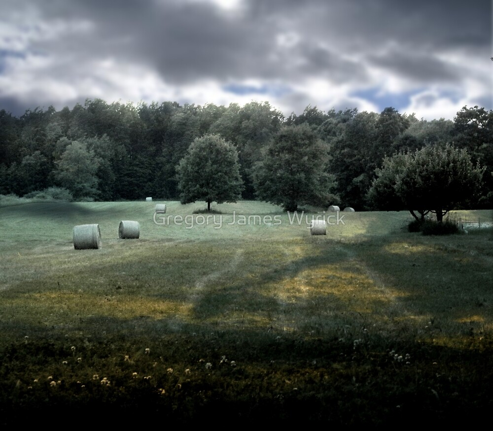 Field by Gregory James Wyrick