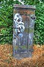 Telephone Junction Box by Nigel Bangert