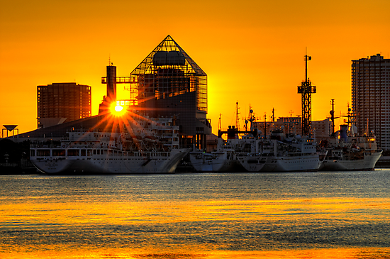 First sunrise of the New Year, 2009; Tokyo Bay, Japan by Alfie Goodrich