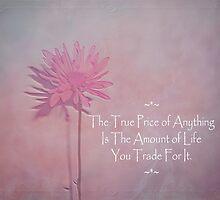 True Price by Adri Turner