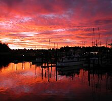 Harbor Sunrise by Randall Scholten