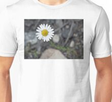 Daisy Blooming in the Rocky Mountains Unisex T-Shirt