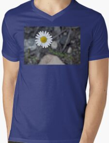 Daisy Blooming in the Rocky Mountains Mens V-Neck T-Shirt