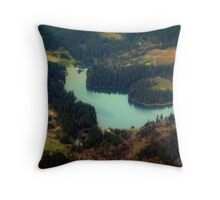 Oregon in the Spring Throw Pillow