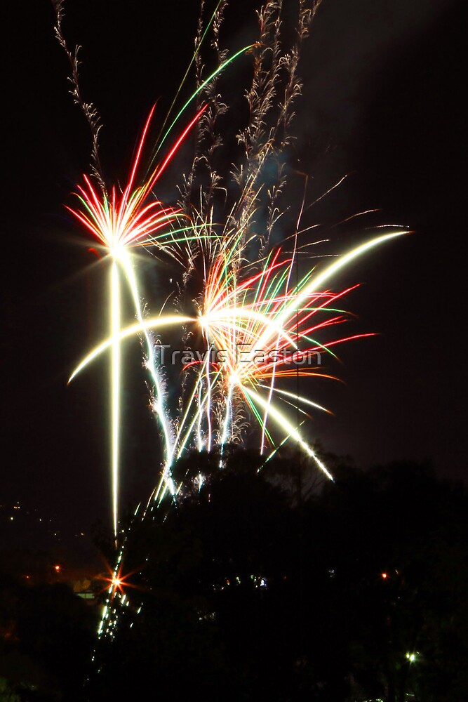 Happy New Year (my first 5DmkII post) by Travis Easton