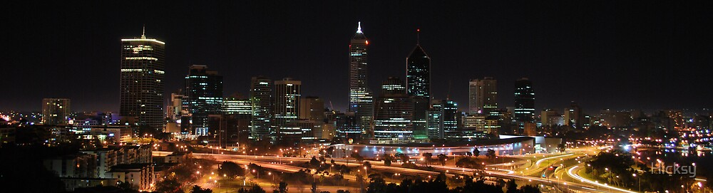 Perth from King's Park by Hicksy