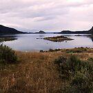 Patagonian lake, Tierra del Fuego, Argentina by Elaine Stevenson