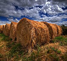 Straw bales at sunset. by Victor Pugatschew