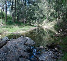 Grove Creek by garts