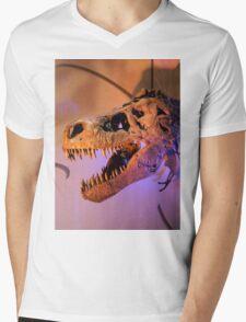 Sue Mens V-Neck T-Shirt