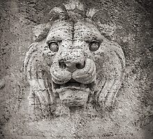 Made of stone lion by Marco Scataglini