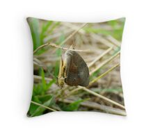 Battle for your Affection Throw Pillow