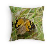 Butterfly Mating Season Throw Pillow