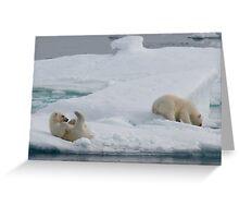 Polar Play Time Greeting Card