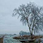 Winter in Holland 1 by Minne