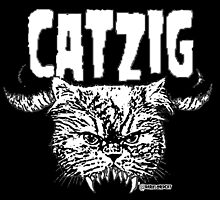 catzig by darklordcat